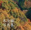 画像2: 【限定Wカバー仕様】木次線写真集 (2)